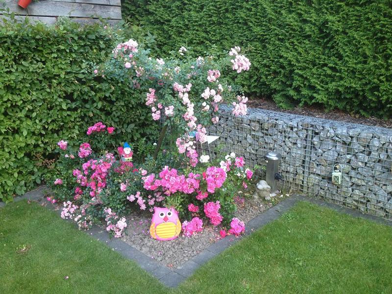 Blumenbeet und Gabionen