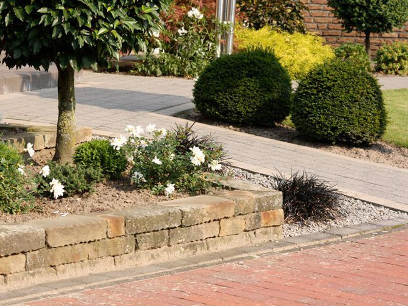 Bepflanzter und gepflasterter Vorgarten